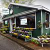 BRYAN EATON/Staff photo. Knapp's Greenhouses, a familiar sight on Main Street in West Newbury.