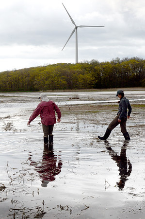BRYAN EATON/Staff Photo. Justin Lesser, left, and Hillary Sullivan slog through an extremely high tide in the marsh along the Rowley River to testing site where some of the muddy banks have fallen.