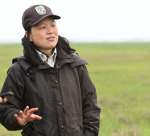 BRYAN EATON/Staff Photo. Nancy Pau, from the  Parker River National Wildlife Refuge, talks about the marsh restoration project at the refuge.