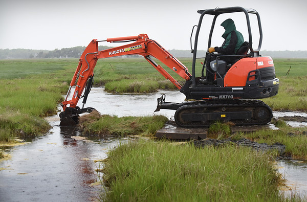 BRYAN EATON/Staff Photo. Geoff Wilson of Northeast Wetland Restoration is helping with the marsh restoration at the Parker River National Wildlife Refuge.