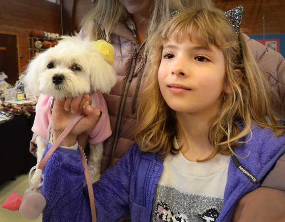 BRYAN EATON/Staff photo. Sofia Waldron, 8, of Newburyport listen as her dog Lola was named second place winner in the Dog Costume contest in the Kentucky Derby Category. Other categoriesin the Newburyport Salvation Army's Fido Fair were Cinco de Mayo and Star Wars.
