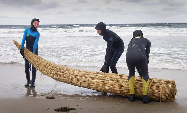 Amanda Getchell/Staff Photo. Nock Middle School students, from left, Will Pflaum, Caleb Bradshaw and Will Roelofs bring the raft made out of phragmites to the ocean at Salisbury Beach.