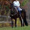 JIM VAIKNORAS/Staff photo Nady Rampeleergh-Peters on Nero at Chuck Patti Training Center in Merrimac.
