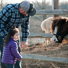 "JIM VAIKNORAS/Staff photo Rowyn Darling, 2, and her dad Rich of Newburyport say hello to Chiquita, Spanish for ""Little Girl"", at the Tendercrop Farm in Newbury Wednesday afternoon. After visiting the mini-horse they went to see the  ducks, the chickens, the geese and the goats."
