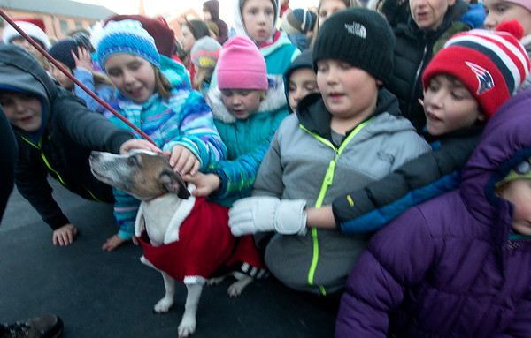 "JIM VAIKNORAS/Staff photo Bernie, who along with Teak won the ""Dog of the Year"" is Greeted by his fans at  the annual Santa Parade and Tree Lighting in Market Square in Newburyport Sunday"