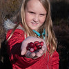 JIM VAIKNORAS/Staff photo Charlotte Bailey, 9, of Andover shows some cranberries she picked during a tour of a cranberry bog at the Parker River Wildlife Refuge.