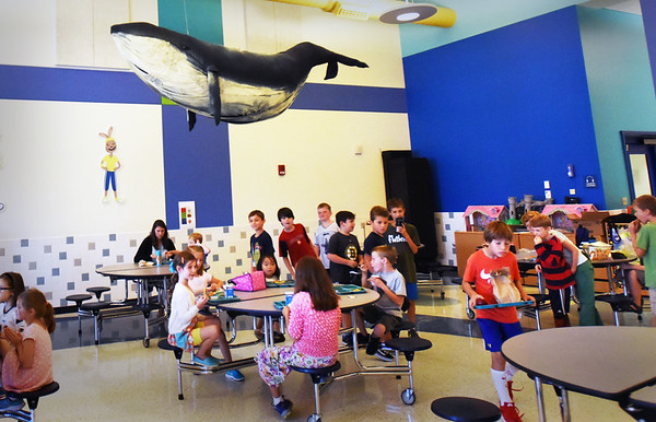 BRYAN EATON/Staff photo. A model of a humpback whale hangs over the cafeteria at the Bresnahan School, a gift from Emily Tallman Masiello, husband Christopher and children Lucas and Tyler, feeling it would be appropriate for Newburyort's nautical history. Art teacher Pam Standley Jamison held a contest to make a picture of and name the whale, with Avery Tierney coming up with the winning name, Anchor.