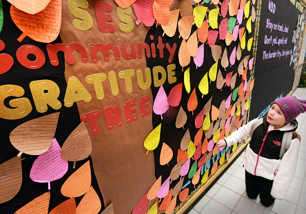 BRYAN EATON/Staff photo. Jayme Hill, 7, checks out entries on the Salisbury Elementary Gratitude Tree while waiting for the late bus. Students wrote what they'r thankful for on a leaf attached to the tree during the time of Thanksgiving.