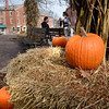 BRYAN EATON/Staff photo. The city of Newburyport is hoping to compost pumpkins to keep them out the trash flow.