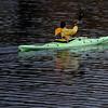 JIM VAIKNORAS/Staff photo A kayaker glides across Lake Gardner late Saturday afternoon.