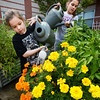 BRYAN EATON/Staff photo. Liana MacNeil, 7, left, and Lily WIlson, 10, watered the Salisbury Elementary School Community Garden while waiting for the late bus yesterday. The garden, tended by kids in the summer program earlier, has given tomatoes, cucumbers and green peppers to the school's cafeteria as crudites with dip.