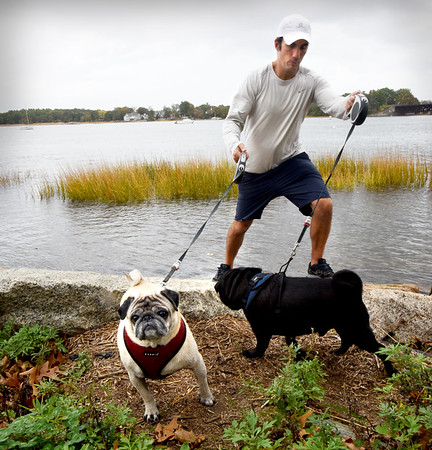 BRYAN EATON/Staff photo. Boomer, right, and Izzy check out the Merrimack River along Cashman Park on Tuesday with their human counterpart, Owen Barron of Newburyport. It's unclear whether they're entering the contest.
