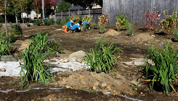 BRYAN EATON/Staff photo. River Valley Charter School students are helping the Newburyport Parks Department put in a rain garden green buffer which will filter rain water before is goes into drainage.