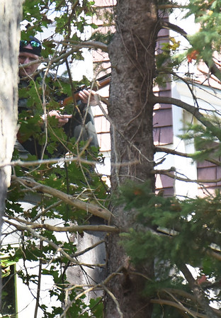 BRYAN EATON/Staff photo. A wildlife official positions on a nearby roof with a tranquilizer gun to take down the cub.