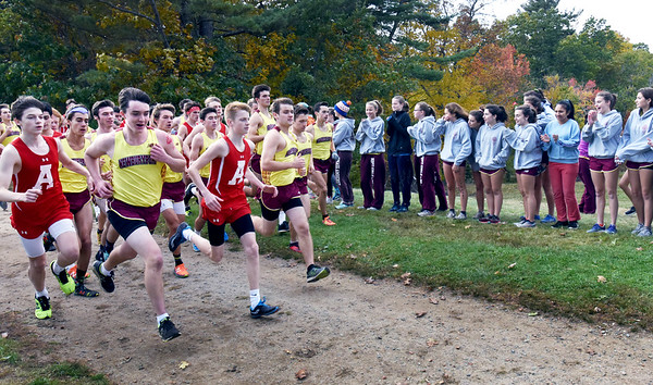 BRYAN EATON/Staff photo. The Newburyport High School girls cross country team cheer on their male counterparts as they take on Amesbury.