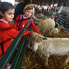 BRYAN EATON/Staff photo. Amesbury Elementary School first-graders Apphia Bakanosky, left, and Nina Primack, both 6, pet the sheep at the Topsfield Fair.