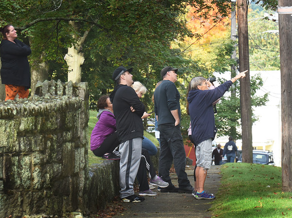 BRYAN EATON/Staff photo. The mother and cub black bears drew quite the crowd which stood at Mt. Prospect Cemetery across the street from where they were perched.