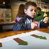 BRYAN EATON/Staff Photo. Kindergartner Liam Lewis, 5, cuts out pieces of paper to become the tops of pine trees at Amesbury Elementary on Thursday. He and his classmates in Sara Ramos's art class were making a collage of a winter scene  of the forest.