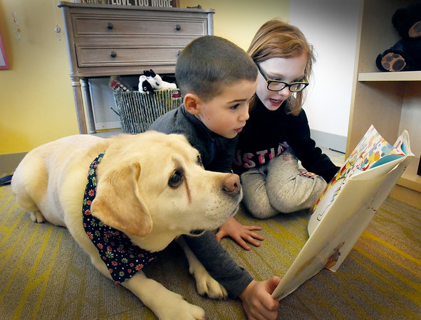 """BRYAN EATON/Staff Photo. Nico Azul, center, and Emma Smith, both 8, read """"The Magic Hat"""" to Tracker, also 8, at the Pine Grove School in Rowley. The yellow lab is the pet of assistant Principal Nicole LaPerriere who brings Tracker to the school three days a week and greets students as they come into school. The certified therapy dog gets read to by students in a nonjudgemental environment which allows students to enjoy reading, build confidence as they can read at their own pace."""
