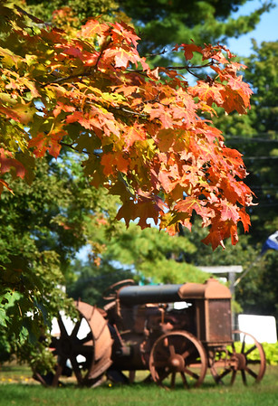 BRYAN EATON/Staff photo. Certain trees always seem to change color earlier than other ones when it get's colder like this maple tree next to Bartlett's Farm Stand in Salisbury framing this old tractor. Temperatures last night were to dip in the low 50's with a rebound close to 80 degrees during the day Wednesday with chance of more rain.
