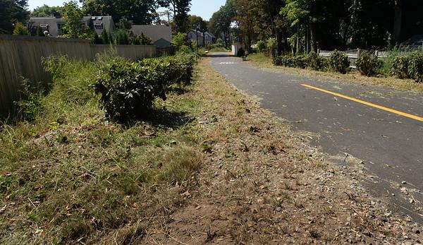BRYAN EATON/Staff photo. The landscaping alongside the Clipper City Rail Trail near Chestnut Street in Newburyport has been mowed.