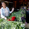 JIM VAIKNORAS/Staff photo Dayana Espinal puts together flower arraignments at the Tendercrop Farm in Newbury Saturday morning. The flowers were grown right at the farm.
