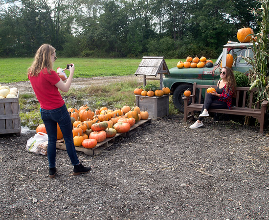 JIM VAIKNORAS/Staff photo Rebecca Lynskey takes a photo of Ali Cabella,with the pumpkins at the Colby Farm in Newbury Saturday morning.