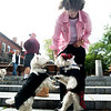JIM VAIKNORAS/Staff photo Cynthia Richardson has her dogs Champion and Squeaks dance for treats at a Westie dog meet up on Inn street in Newburyport Saturday.