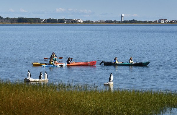 """BRYAN EATON/Staff Photo. Nock Middle School seventh-graders leave Joppa Park boat ramp and head to Plum Island Point on the calm Merrimack River. The are doing a """"place based education"""" science unit on learning about the river and environs."""
