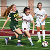 BRYAN EATON/Staff photo. Newburyport's Audra Greenbiott moves the ball.
