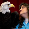 JIM VAIKNORAS/Staff photo Mary-Beth Kaeser of Horizon Wings holds Atka, a bald eagle , at a Eagle Festival event at Newburyport City Hall Saturday. The annual event featured  live bird show, crafts, and guided eagle viewing, at multiple locations.