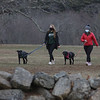 MIKE SPRINGER/Staff photo<br /> Ciara O'Malley, left, and Lila Picquad, both of Newburyport, walk Ciara's dogs Levy and Luna on Monday at Maudslay State Park.