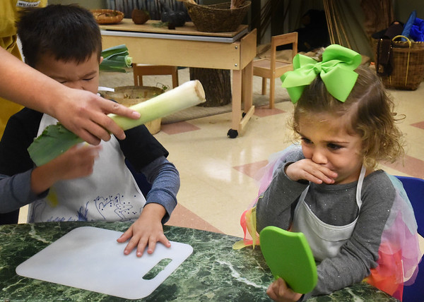 BRYAN EATON/Staff Photo. Ella Maribito, 4, reacts to the odor of a leek  teacher Kristine Soares passed around for children to smell.
