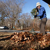 BRYAN EATON/Staff photo. Ginger Iola of Salisbury rakes leaves for the Coastal Trails Coalition fall cleanup at the intersection of the Ghost Trail and Bartlett Street in Salisbury on Saturday morning. Volunteers also were on the Marsh Trail and the Riverwalk Trail in Amesbury.