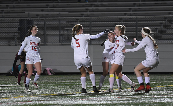 JIM VAIKNORAS/photo Amesbury players celebrate Chelsea Lynch first half goal against Millis during their state semi-final game at Mansfield High School Wednesday. Amesbury lost the game 2-1.