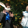 Newburyport: <br /> Taylor Adamik as the White Rabbit and Hannah Libby as Alice in the THeater in the Open's production of Alice in Wonderland.<br /> Photo by Jim Vaiknoras/Newburyport Daily News. Sunday, May 30, 2004