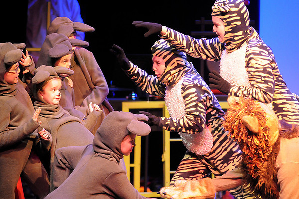 """Newburyport: Local children star in the new play at the Firehouse, """"Into the Act with Aesop's Fables"""", which will feature dancing, music, and multimedia. Photo by Ben Laing/Newburyport Daily News Tuesday February 3, 2009."""