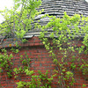 Newburyport: Bushes grow out of the Powder House. (Photo by Bryan Eaton/). Wednesday, June 4, 2003 (NOTE: THIS IS A DIGITAL CAMERA IMAGE).<br /> **************************************<br /> Filter: Min (QMPro: Red Radius:0/Blue Radius:3/No Desp.)<br /> USM: Normal (Amt:200/Radius:0.3/Thresh:2)<br /> File Size: 7.48MB<br /> Original file name: DSC_0014.JPG