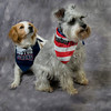 Sandy with a Boson Strong bandana, retail $8.99 and Abby with a Newburyport bandana., retail $9.99