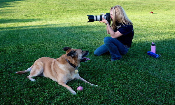 Photographer Dawn Norris' dog Honeycomb looks on as she takes advantage of the late afternoon light at Pipestave Hill in West Newbury .