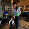 Erin Bligh of Dancing Goat Dairy with her baby goats Tessa and Ava at the Tendercrop Farm in Newbury.