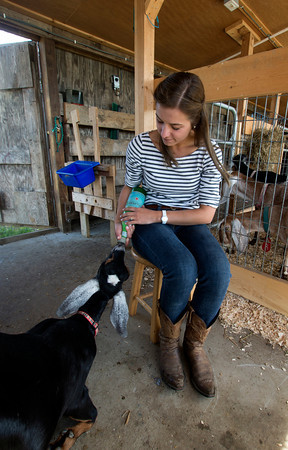 Erin Bligh of Dancing Goat Dairy with her goat Tessa at the Tendercrop Farm in Newbury.