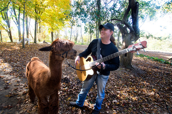 Pat Badger and one of his alpacas Salvador his home in West Newbury