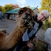 Olivia Sanderson and ... at  Parker River Alpacas