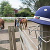 JIM VAIKNORAS/Staff photo A polo helmet  at Stage Hill Farm in Newbury.
