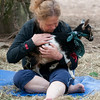 JIM VAIKNORAS/Staff photo Rosemary Krol hold one of the goats at Moon Shadow Goat Yoga in Boxford..