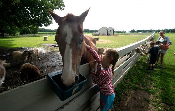 JIM VAIKNORAS/Staff photo Logan Sansone pets Sukey the quarter horse at the Spencer-Peirce-Little Farm Little Farmer Camp.