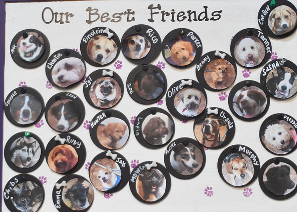 JIM VAIKNORAS/Staff photo A display of costumers at Quinn's Canine Cafe in Newburyport.