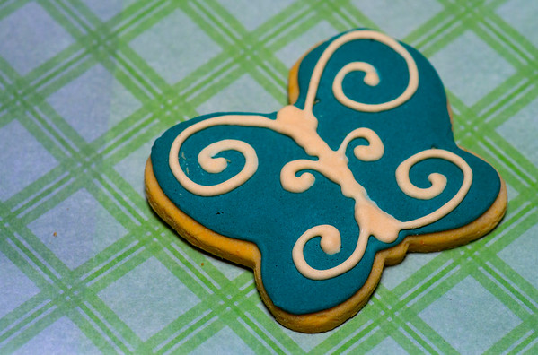JIM VAIKNORAS/Staff photo A butterfly cookie at Quinn's Canine Cafe in Newburyport.