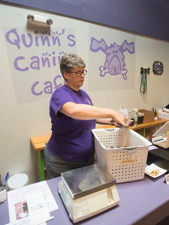 JIM VAIKNORAS/Staff photo Owner Quinn Soine-Norris measures a bag of liver treats at Quinn's Canine Cafe in Newburyport.